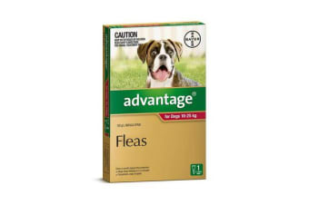 Advantage Dog Large Red - 4p