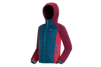 Regatta Childrens/Kids Excelsis Hooded Jacket (Purple Violet/Ocean Blue) (9-10 Years)