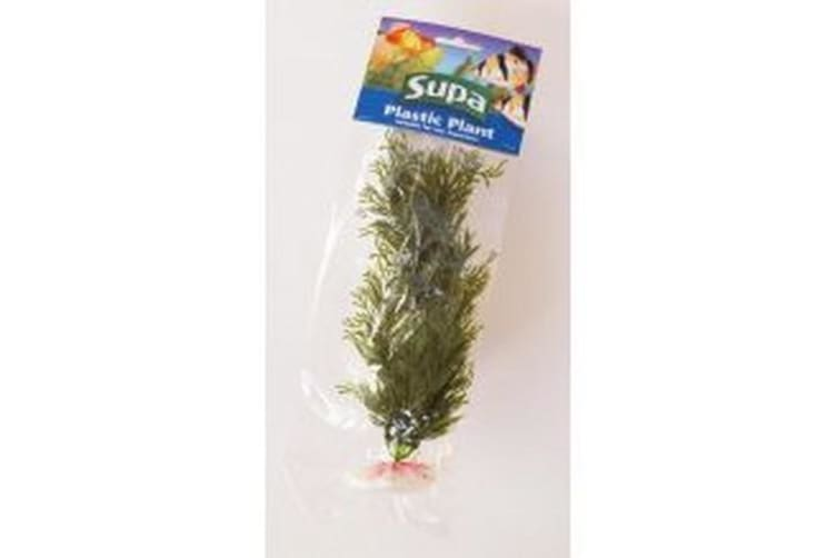 Supa Plastic Tank Plant (May Vary) (8in)