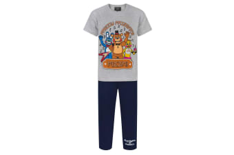 Five Nights At Freddys Childrens/Boys Official Character Pyjama Set (Grey/Navy)