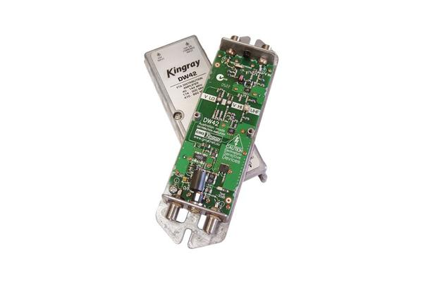 Kingray 42Db Rf Distribution Amplifier