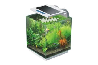 Aquarium Starfire Glass RGB LED Fish Tank 16L