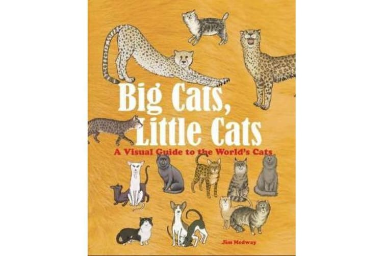 Big Cats, Little Cats - A Visual Guide to the World's Cats