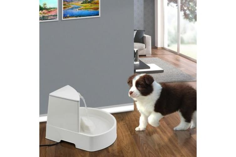 Automatic Electric Pet Water Fountain White