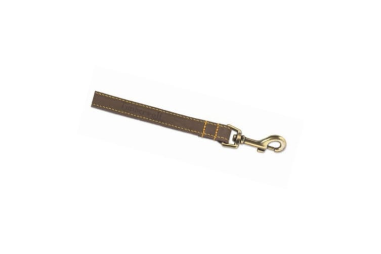 Ancol Timberwolf Leather Dog Lead (Sable) (One Size)