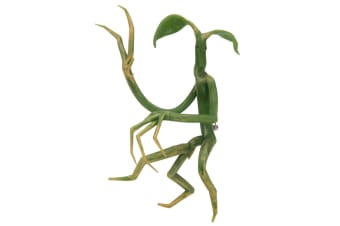 Fantastic Beasts Find Them Pickett Bowtruckle Pin & Necklace