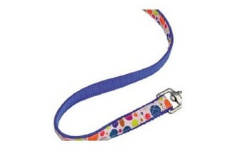 Hi-Craft Paparazzi Spotlight Pet Lead (Blue) (40 x 1in)