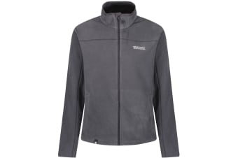 Regatta Great Outdoors Mens Adventure Tech Fairview Fleece Top (Seal Grey/Iron)