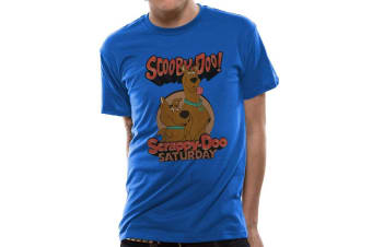 Scooby Doo Adults Unisex Adults Scooby And Scrappy T-Shirt (Blue) (S)