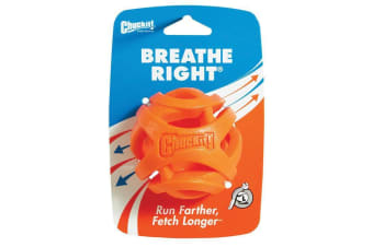 ChuckIt! Large Single Breathe Right Fetch Dog & Puppy Ball Toy for Large Breeds (Chuck It)