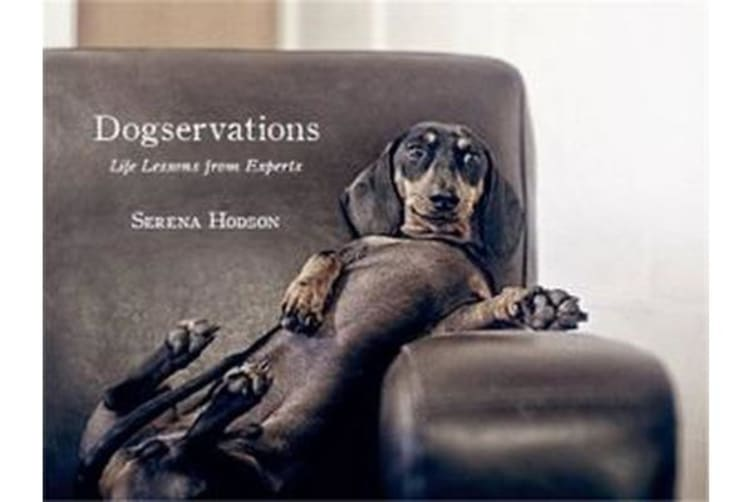 Dogservations - Life Lessons from Experts