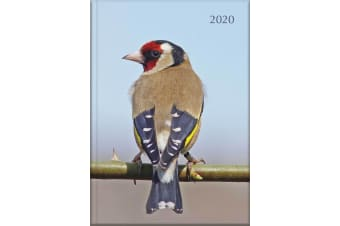 Birds - 2020 Diary Planner A5 Padded Cover by The Gifted Stationery