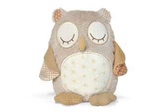 Cloud B Smart Sensor Nighty Night Owl Soother