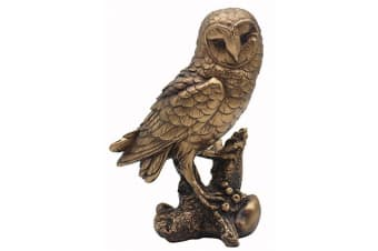 Reflections Bronzed Owl Ornament (Bronze) (One Size)