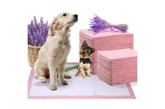 PawZ 100 Pcs 60x60 cm Pet Puppy Toilet Training Pads Absorbent Lavender Scent