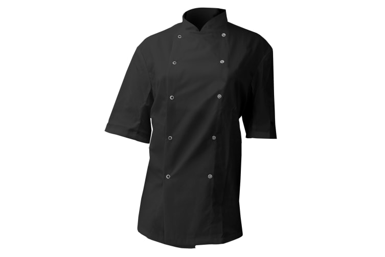 Dennys AFD Mens Chefs Jacket / Chefswear (Pack of 2) (Black) (3XL)