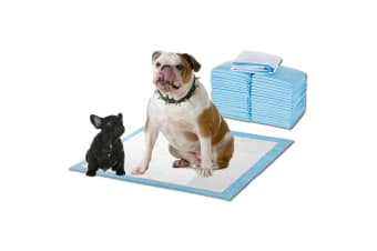 PawZ 400 Pcs 60x60cm Ultra Absorbent Puppy Pet Dog Cat Toilet Training Pads Blue Blue /Pink/Pink with Lavender Scent/White with Meadow Scent