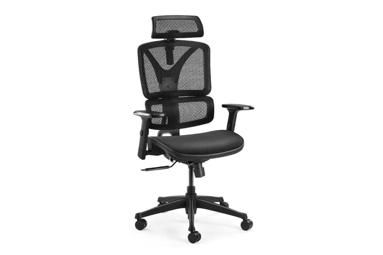Ergolux EX10 Ergonomic Mesh Office Chair
