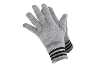 ProClimate Mens Thinsulate Gloves (Grey)