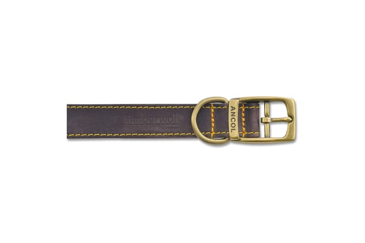 Ancol Timberwolf Leather Pet Collar (Sable/Brown) (45-54cm (Size 6))