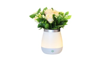 Select Mall Dimmable Creative Touch Vase Night Light Bedroom Bedside Night Light Potted Flower Fire Lamp