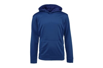Champion Boys' Solid Performance Pullover Hoodie (Dark Royal, Size M)