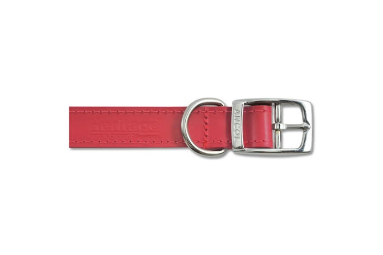Ancol Pet Products Heritage Buckle Up Leather Dog Collar (Red) (28-36cm (Size 3))