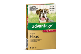 Advantage for Dogs 10-25 kgs - 6 Pack - Red - Flea Control Treatment (Bayer)