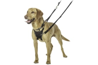Halti No Pull Dog Harness (Black)