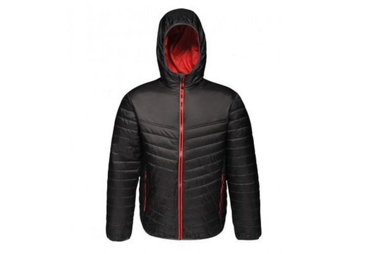 Regatta Standout Mens Acadia II Down-Touch Padded Jacket (Black/Classic Red) (XS)