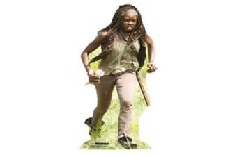 The Walking Dead Michonne Cardboard Cutout