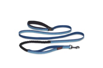 HALTI All-In-One Lead (Blue)