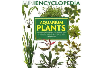 Aquarium Plants - Comprehensive Coverage, from Growing Them to Perfection to Choosing the Best Varieties