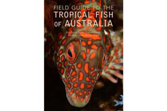Field Guide to the Tropical Fish of Australia