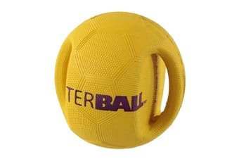 Pet Brands Interball Interactive Dog Toy (Yellow)