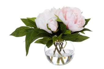 Rogue Peony Sphere 20cm Pink Glass