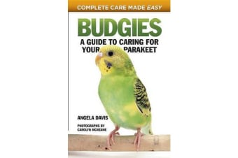 Budgies - A Guide to Caring for Your Parakeet