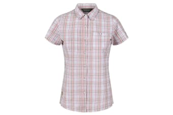 Regatta Womens/Ladies Jenna III Short Sleeve Checked Shirt (Nutmeg Cream Check)