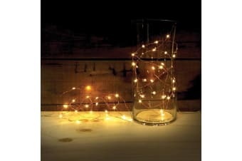 LED Copper Wired Lights | outdoor function decoration lights accessories party strand bbq gift