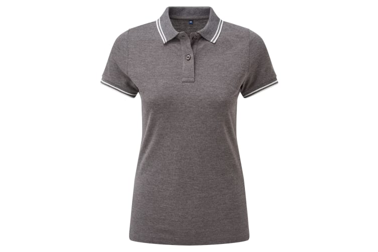 Asquith & Fox Womens/Ladies Classic Fit Tipped Polo (Charcoal/White) (L)