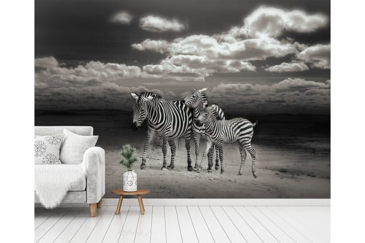 3D Zebra Mother And Child 254 Self-adhesive Vinyl, XXXXL 520cm x 290cm (WxH)(205''x114'')