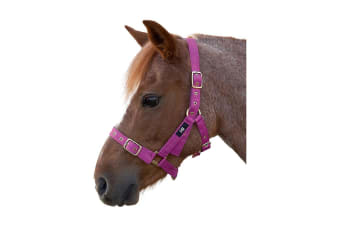 Hy Holly Fully Adjustable Head Collar (Pink) (Pony)