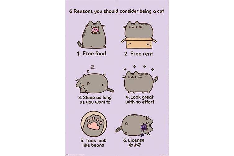 Pusheen Reasons Poster (Multi-colour) (One Size)