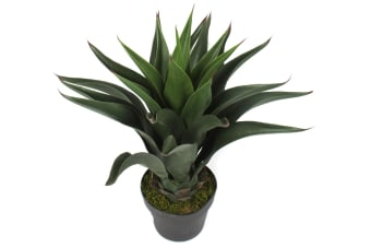 Artificial Agave In Pot | 60cm