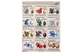 Age Of Dragons 50x70cm Wyrmling And Egg Identification Chart Canvas (Multicoloured)