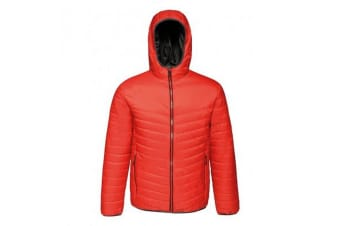 Regatta Standout Mens Acadia II Down-Touch Padded Jacket (Classic Red/Black) (L)