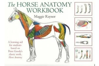 The Horse Anatomy Workbook - A Learning Aid for Students Based on Peter Goody's Classic Work, Horse Anatomy