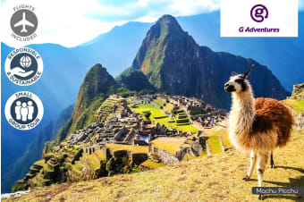 PERU: 14 Day Amazon to the Andes Intimate Tour Including Flights for One or Two