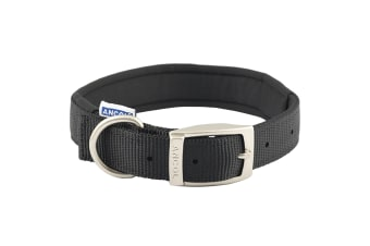 Ancol Pet Products Heritage Padded Dog Collar (Black)