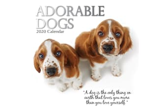 Adorable Dogs - 2020 Premium Square Wall Pets Calendar 16 Months New Year Gift